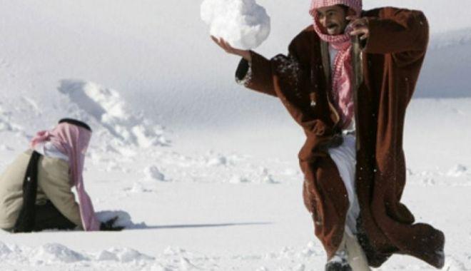Fenomen rar: ninge în deșert! VEZI IMAGINI! - 1-1578907961.jpg