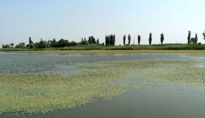 O nouă catastrofă ecologică. Lacul Iezer Călărași a secat - 1-1602848521.jpg