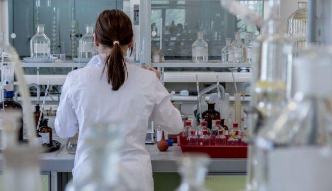 Cercetătorii au produs mai mulţi mini-rinichi, cu ajutorul tehnologiei - 1-1606228416.jpg