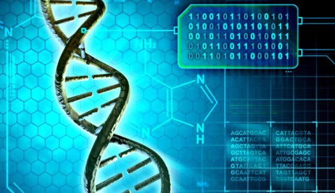 Bază de date ADN, realizată de Interpol, pentru găsirea PERSOANELOR DISPĂRUTE - 150824627ml-1622613134.jpg