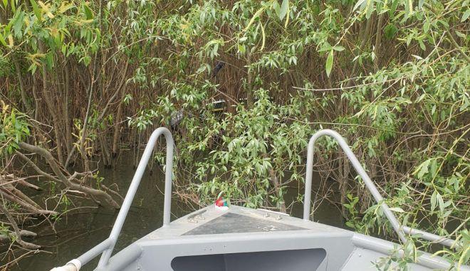 ALERTĂ! Un bărbat a dispărut în Dunăre, este căutat de scafandrii de la ISU Dobrogea - 4maiinecatharsova2-1620112194.jpg