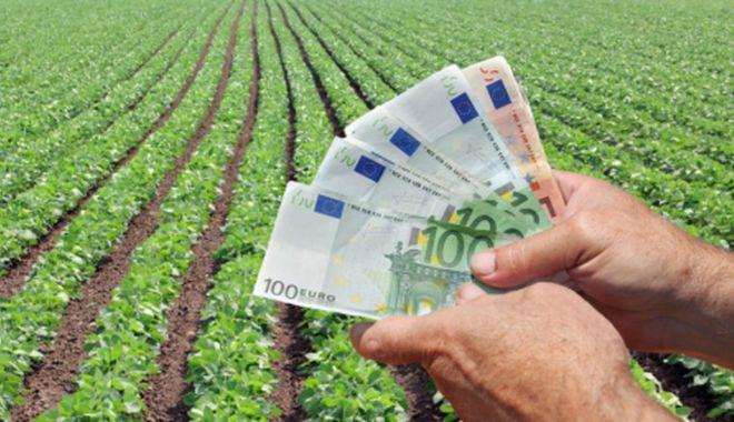 Foto: Atenție fermieri! Sunt disponibile 16,7 milioane euro pentru proiecte de investiții