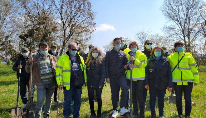 Comisarii de la Garda de Mediu Constanţa au plantat copaci în Parcul Tăbăcărie - comisariidemediu1-1618594025.jpg