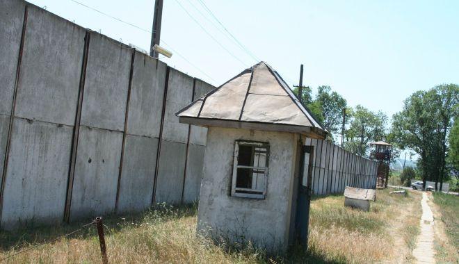 Infractori duși la Penitenciarul Poarta Albă - condamnatiinchisoare-1621001768.jpg