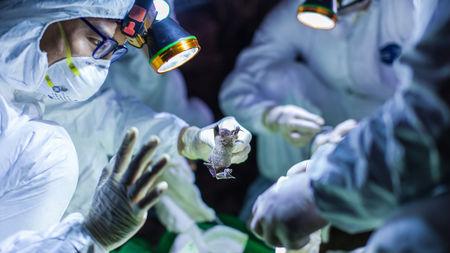 Foto: Șirul de îmbolnăviri nu se mai termină… Încă trei cazuri confirmate în ultima oră!