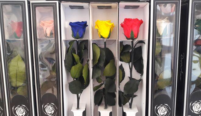 Trandafirii criogenaţi, o afacere trainică și în vremuri de pandemie - fond1-1615224630.jpg