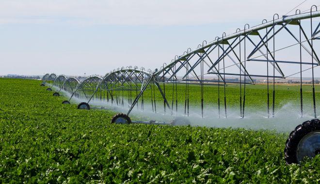 Ce cote de TVA se aplică în agricultură. Cine plăteşte taxa pe valoarea adăugată şi cine nu - fond2-1610564027.jpg