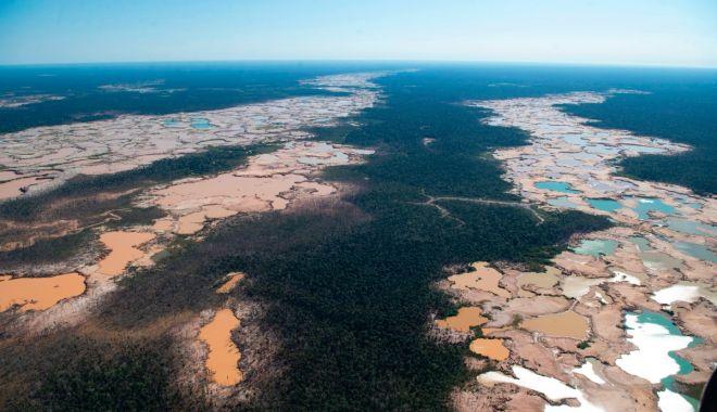 """Pădurea amazoniană nu mai este """"plămânul"""" Terrei: emite mai mult dioxid de carbon decât consumă - fond2-1626375481.jpg"""