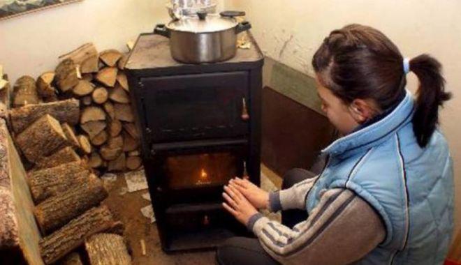 Preţul lemnelor de foc a explodat! Un metru cub a ajuns de neatins - fond3-1631035527.jpg