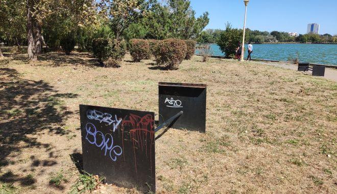 Dezastrul din Parcul Tăbăcărie: de la iarba uscată, la monumente distruse! - fond3-1631553464.jpg