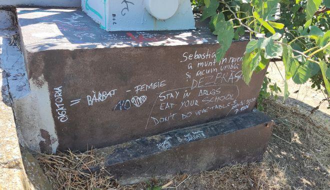 Dezastrul din Parcul Tăbăcărie: de la iarba uscată, la monumente distruse! - fond5-1631553491.jpg