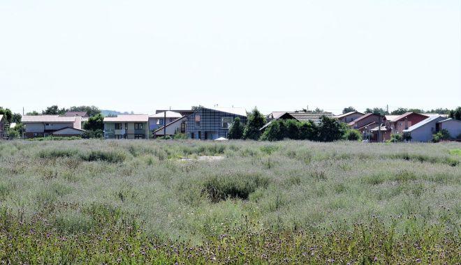 Locuitorii din Cumpăna, somaţi să tundă iarba din apropierea gospodăriilor - fondcumpanacuratenie1-1626375874.jpg
