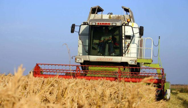 Încotro se îndreaptă agricultura românească? Răspunsul îl va da recensământul general agricol din 2021 - fondincotroseindreaptaagricultur-1602869183.jpg