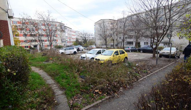Consilierii au decis! Asociaţiile de proprietari, obligate să îngrijească spaţiile verzi din jurul blocului - fondmodificarearegulamentului-1623433313.jpg