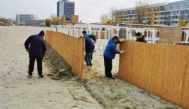 Garduri de stuf pentru protecţia plajelor, pe timpul iernii - garduristuf-1606063004.jpg