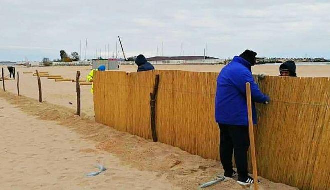 Garduri de stuf pentru protecţia plajelor, pe timpul iernii - garduristuf1-1606063018.jpg