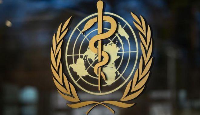 Directorul OMS acuză ţările bogate că le lasă fără vaccin pe cele sărace - image202003202373952041oms-1610180402.jpg
