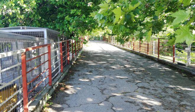 Încep lucrările de reparații la pasarela pietonală de la Poarta 2 a portului Constanța - inceplucrariledereparatiilapasar-1624470492.jpg