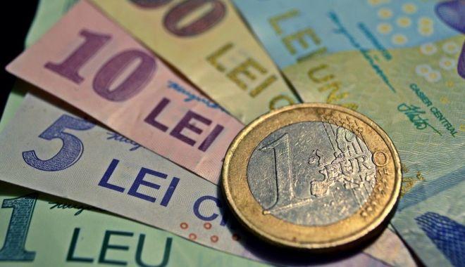 Foto: Leul mușcă din toate valutele