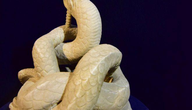 Şarpele Glykon părăseşte Muzeul de Istorie Constanţa după 59 de ani - muzeuldeistoriesiarheologie21-1623238715.jpg