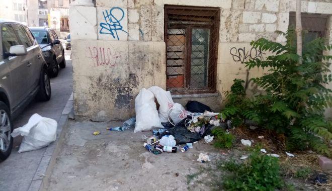 Poliţiştii locali din Constanţa, amenzi pentru cei care aruncă gunoaiele pe domeniul public - politistiilocali-1623147104.jpg