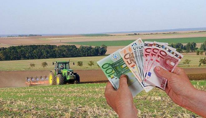 Preşedintele unei asociaţii de fermieri din Constanţa, judecat pentru fraudă cu fonduri europene - presedinteleunei-1602092576.jpg