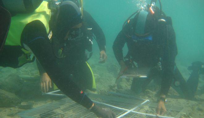 Dotări moderne pentru laboratorul de cercetare subacvatică al Muzeului de Istorie Națională - proiect-1626113051.jpg