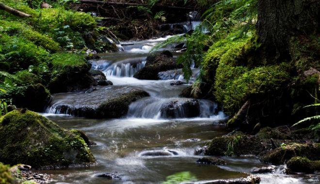 România are nevoie de un sistem naţional de management al apei - romaniaarenevoie-1622746294.jpg