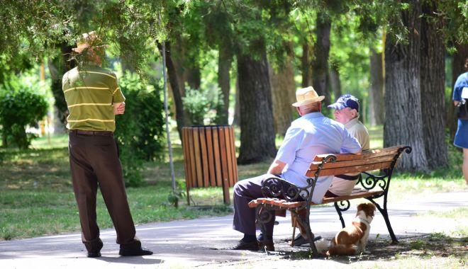 Seniorii Constanței, premiaţi de autorităţile locale - senioriiconstantei-1626378419.jpg