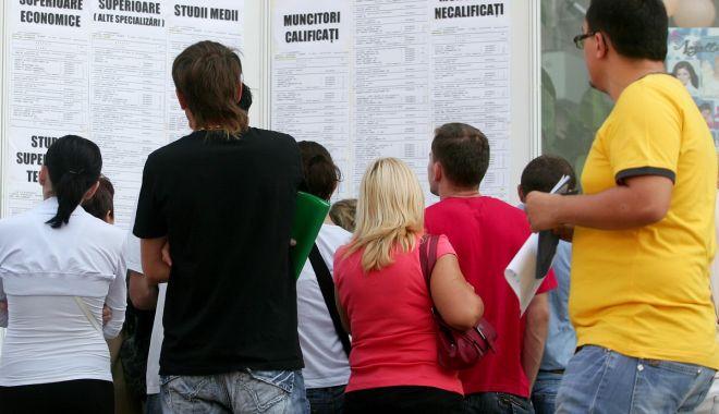 Șomajul în rândul tinerilor și în mediul rural atinge cele mai înalte cote - somajulinrandultinerilor-1632063251.jpg