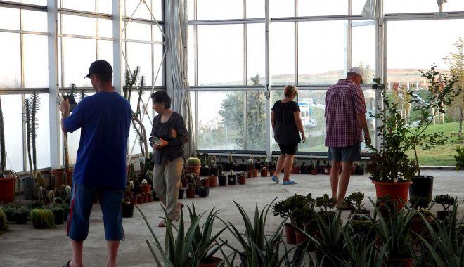 La Techirghiol poţi vizita o grădină botanică unică pe litoral - techirghiol-1626976990.jpg