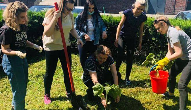 Pentru un oraș curat! Acțiune voluntară de ecologizare la Universitatea Maritimă Constanța - umc5-1623153258.jpg