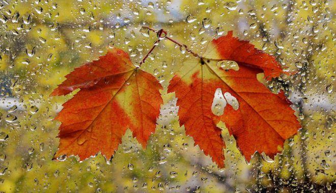 Avertizare meteo de vreme rece și vânt puternic, pentru toată țara - vremea-1632386393.jpg