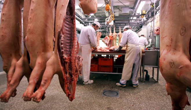 Zootehnia a livrat cantități mai mari de carne pe piață în 2013 - zootehniaalivrat-1391791320.jpg