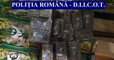 Droguri de 80 de milioane de euro, ascunse printre cutii cu săpun organic în Portul Constanța