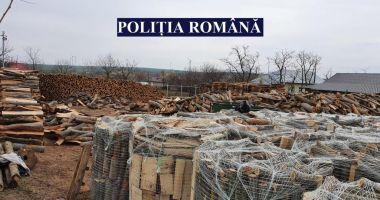 Acţiune a poliţiştilor pentru combaterea faptelor ilegale în domeniul forestier
