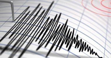 Un cutremur cu magnitudinea 3 a avut loc în Vrancea
