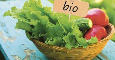 Ecologizarea agriculturii va fi însoțită de riscuri pentru Europa