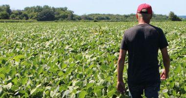 Fermierii și industria alimentară solicită sprijinul autorităților