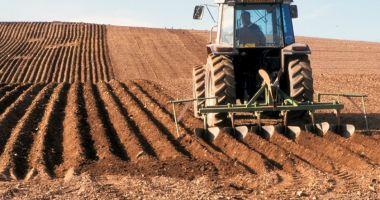 Piața terenurilor agricole din județul Constanța mustește de oferte de vânzare